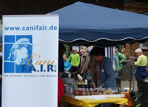 Canifair Stand